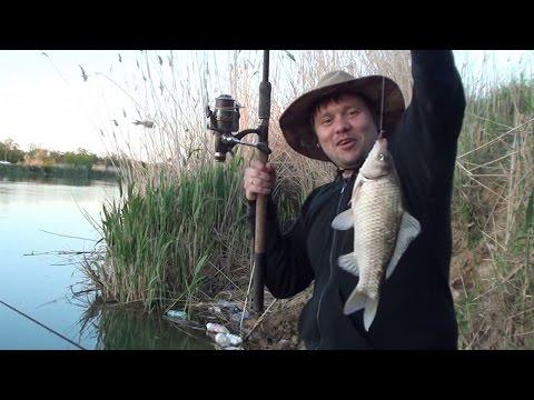Волгодонский канал (рыбалка, ловля карася)