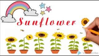 nhóm 4 sunflower einstein nguyễn xuân sanh