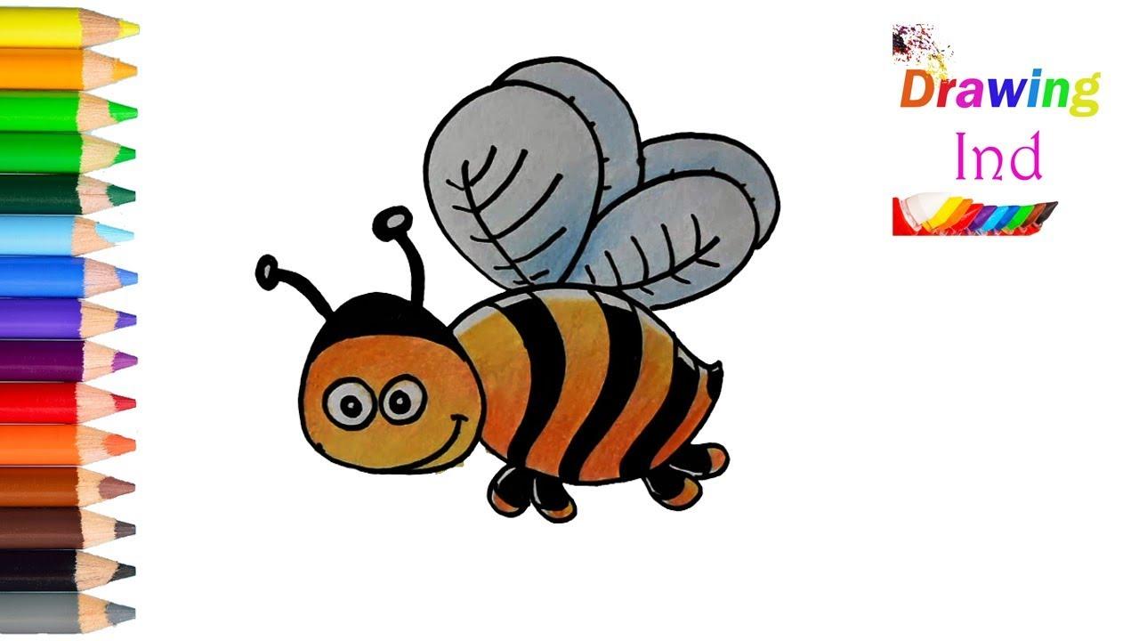 Lebah Lucu Wwwtollebildcom