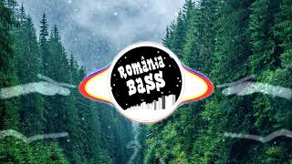 F.Charm Ft. Oana Marinescu-Adevaratele probleme(Bass Boosted)