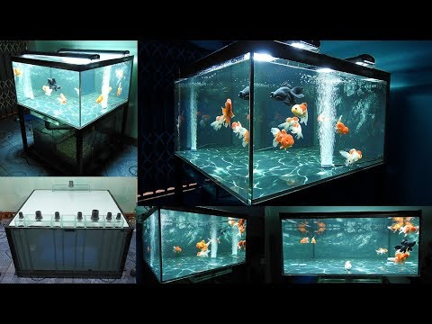 Aquarium Model 12 - Make A Tank Of Goldfish 140Gallon Water