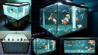 Aquarium model 12 - Make a tank of goldfish 140Gallon water
