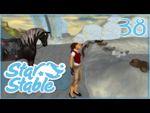 Search for Seals on the Iceberg!! || Star Stable - Episode #38