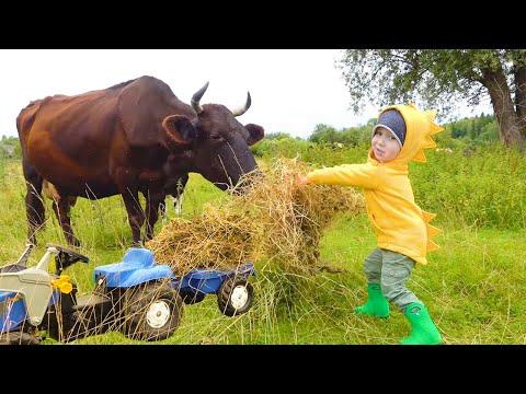 Малыш на ферме ездит на синем тракторе и кормит животных