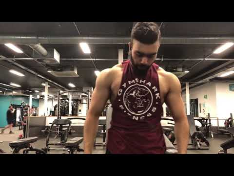 the aesthetic unity  aesthetics / fitness motivation
