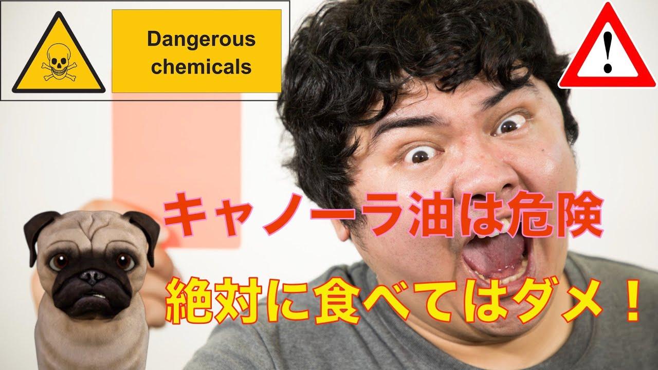 キャノーラ 油 危険