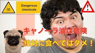 危険 キャノーラ 油
