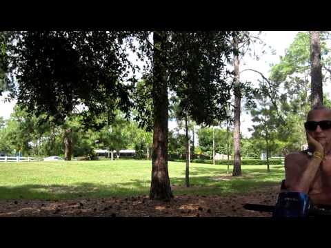 Disney Saratoga Springs Resort -  Grandstand area golf course view
