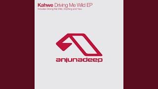 Driving Me Wild (Original Mix)