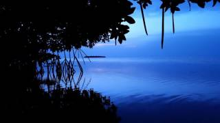 DJ Michael E / Clelia Felix - Hidden Island  *k~kat chill café*