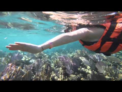 swim-&-snorkeling-adventure-tour-cancun,-mexico