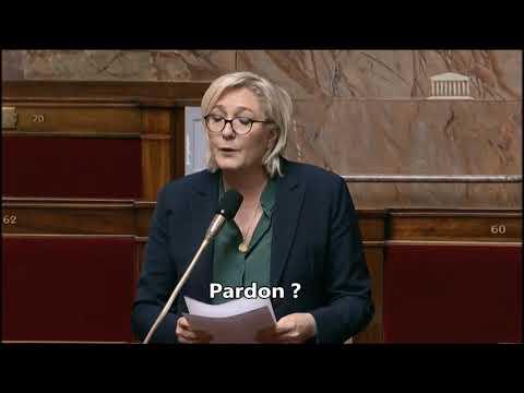 Quand Marine Le Pen s'emmêle les pinceaux dans l'hémicycle