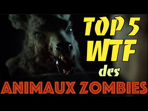top 5 des animaux zombies les plus wtf youtube. Black Bedroom Furniture Sets. Home Design Ideas