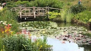 RHS Wisley Garden Surrey