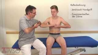Video Neurologische Untersuchung bei radikulärer Symptomatik - Wiener Schule für Osteopathie (WSO) download MP3, 3GP, MP4, WEBM, AVI, FLV Juli 2018