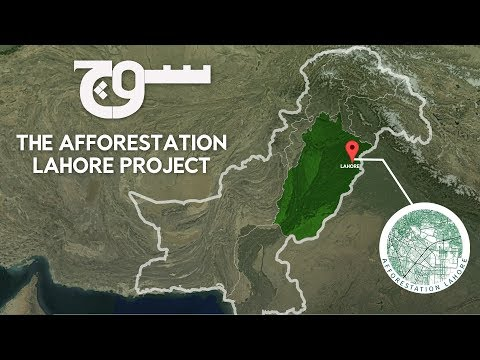 The Afforestation Lahore Project