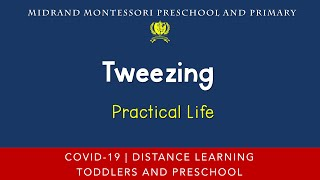 Montessori Practical Life Presentation - Tweezing
