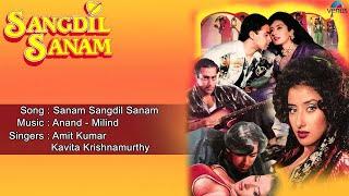 Sangdil Sanam : Sanam Sangdil Sanam Full Audio Song | Salman Khan, Manisha Koirala |