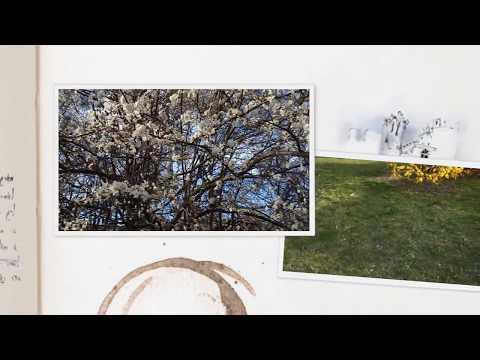 Wiosna W Lublinie
