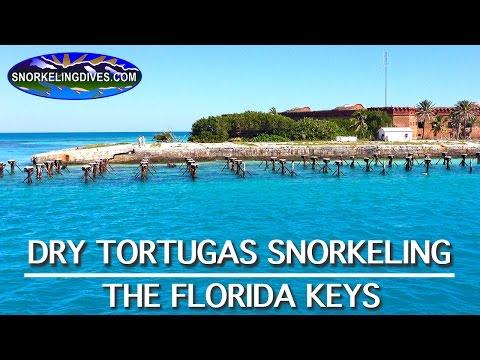 Snorkeling Dry Tortugas | Florida Keys