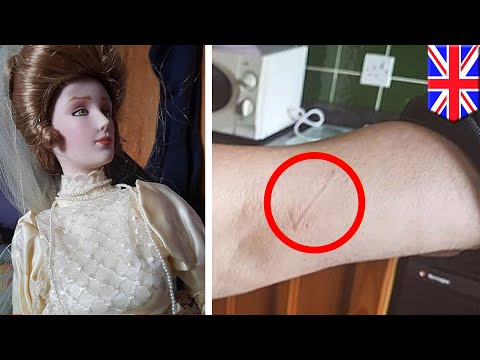 Evil doll: couple attacked by doll sells it on eBay, then attacks new owner's dad - TomoNews
