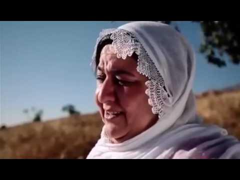 Türkçe Kürtçe Arapça  le le sabiha