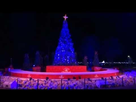 Seaworld San Antonio   Christmas Lights 2012
