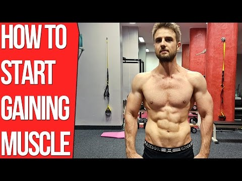 Why Am I Not Gaining Muscle? (Mini Guide Backed by Science)