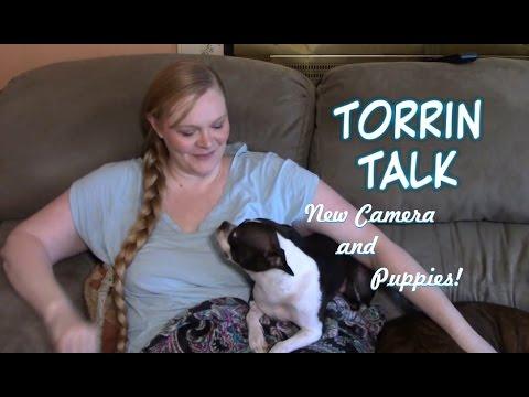 Torrin Talk: New Camera and Puppies!