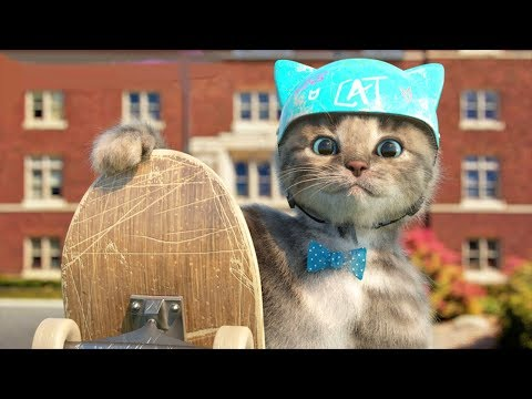 My Favorite Cat Cartoon - Little kitten Pet Care Games For Preschool