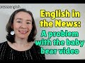 Learn English from the News: A problem with the cute baby bear video