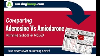 What is the difference Amiodarone Adenosine Cardiac Med Nursing KAMP NCLEX 2019 ICU