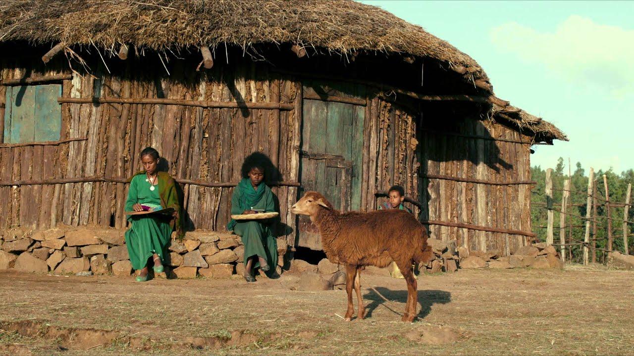 Ephraim Und Das Lamm Trailer