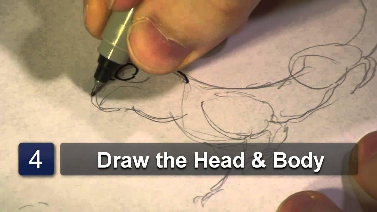 Line Drawing Of Desert Animals : How to draw desert animals youtube