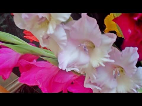 ВСЕМ МОИМ ДРУЗЬЯМ! Волшебная музыка Игоря Двуреченского.Very beautiful music.