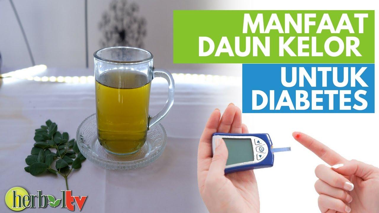 manfaat daun kelor untuk pengobatan diabetes