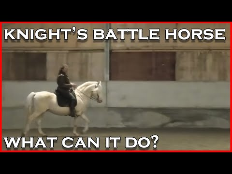 Knight's horse: How did a medieval knight handle his horse in battle? (I demonstrate the basics.)