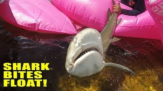 FUNNY!!! World's BIGGEST Float Shark Fishing | Monster Mike