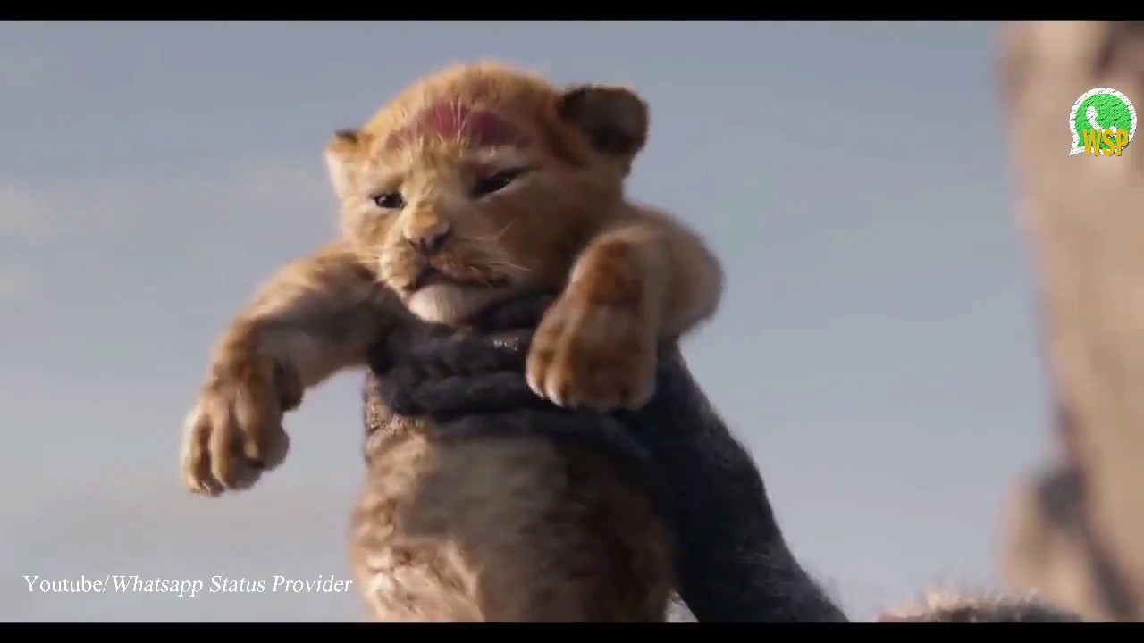 The Lion King Whatsapp status (HD)