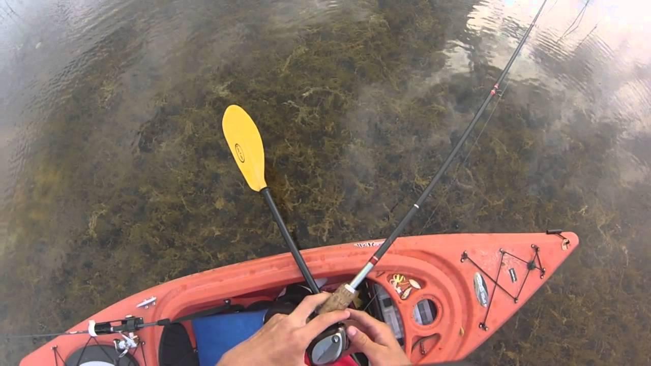 how to fish for fluke