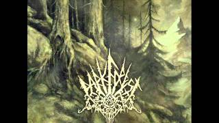 Watch Dark Forest Hearth video