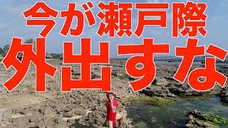 外出してる人に送りつけろ!感染爆発寸前の日本の現状を徹底解説!【せやろがいおじさん】
