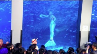 Real Mermaid Footage in Japan Aquarium Live TV