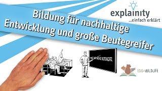 BNE und große Beutegreifer einfach erklärt (explainity® Erklärvideo)