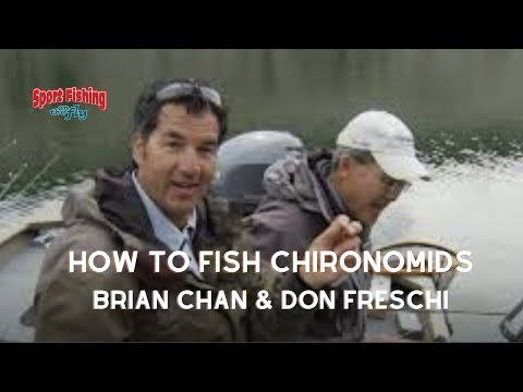 How To Fly Fish Chironomids Effectively.