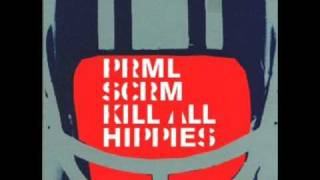 Primal Scream - Kill All Hippies (Two Lone Swordsmen Remix #2)