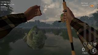 Fishing Planet: How to make easy money and XP in Texas - Low level