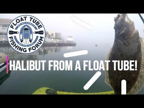 Fishing Huntington Harbor with Float Tube Fishing Forum - So Cal Harbor Fishing Halibut encounter
