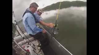 Day of Giants! (Blue and Flathead Catfish)