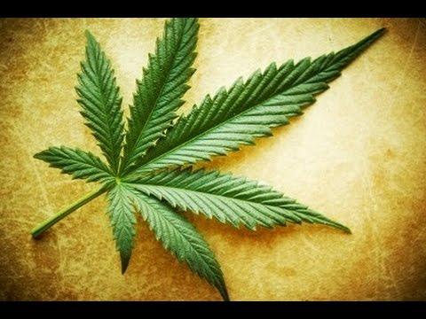 U.S. Marijuana Legalization Is Hurting Mexican Cartels & Farmers